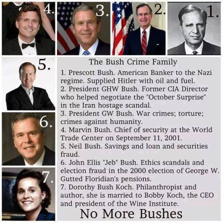 bush family tree 2.jpg