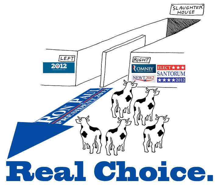 RON PAUL 2012 POSTERS