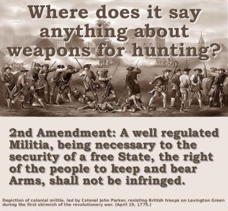 2a Guns NRA GOA hunting