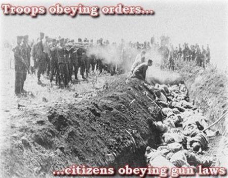 gun laws guns 2a nra goa nazi hitler
