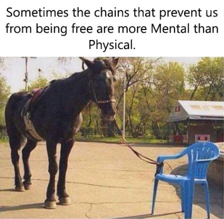 change chains