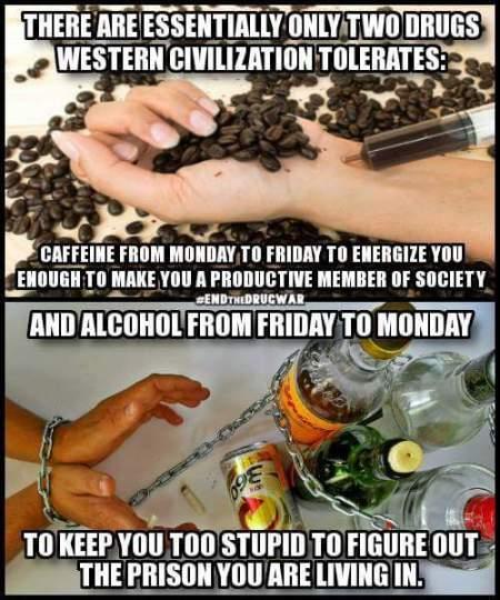 self medicated society