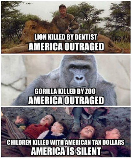 wars lion gorilla children America-Silence1.jpg