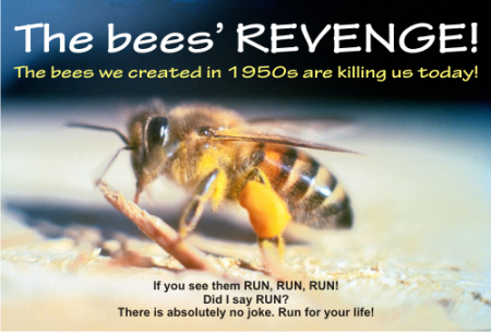 the_bees_revengeFM.png
